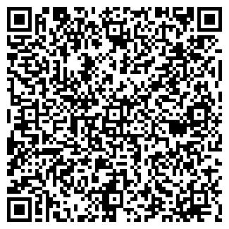 QR-код с контактной информацией организации NTN, ИП