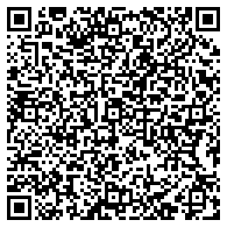 QR-код с контактной информацией организации Ванко, ООО