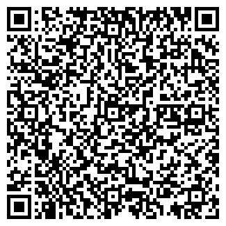 QR-код с контактной информацией организации Ram (Рам), ИП