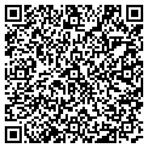 QR-код с контактной информацией организации Argentum (Аргентум), ТОО