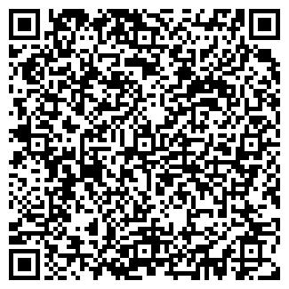 QR-код с контактной информацией организации Штефан, ЧП