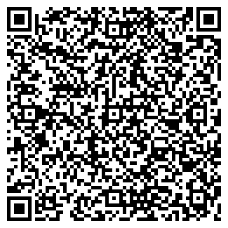 QR-код с контактной информацией организации ООО Дизель-91