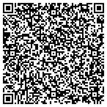 QR-код с контактной информацией организации Николаев А. Н. (Путевой), ИП