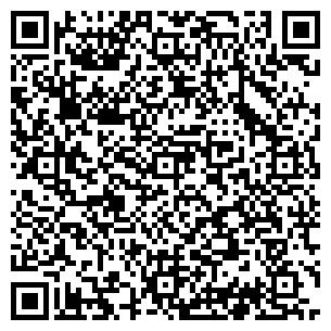 QR-код с контактной информацией организации Василиск, ЧП