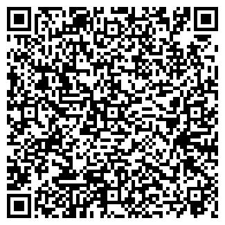 QR-код с контактной информацией организации Скай-1,ООО