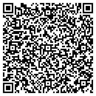 QR-код с контактной информацией организации Piano Forte, ЧП