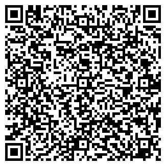 QR-код с контактной информацией организации Shildo, ЧП