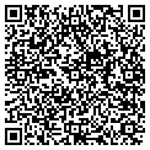 QR-код с контактной информацией организации Забавочка, ЧП