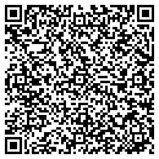 QR-код с контактной информацией организации Шынгыс, ИП
