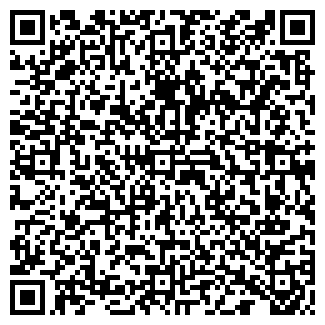 QR-код с контактной информацией организации Амада, ИП