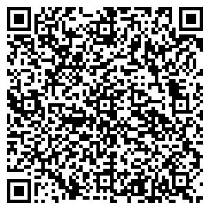 QR-код с контактной информацией организации Idea (Идея), ИП