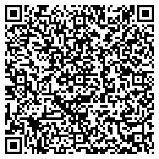 QR-код с контактной информацией организации Вилор (Vilor), УП