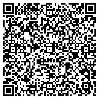 QR-код с контактной информацией организации Чайка, ЧП
