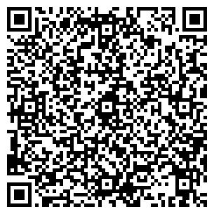 QR-код с контактной информацией организации Студия Леди Стиль, ЧП