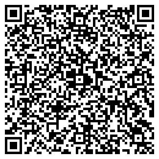 QR-код с контактной информацией организации Соликом, ООО