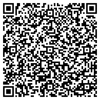 QR-код с контактной информацией организации Георгий, ЧП