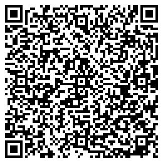 QR-код с контактной информацией организации Визиум, ЧП