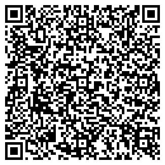 QR-код с контактной информацией организации Васелек, ЧП