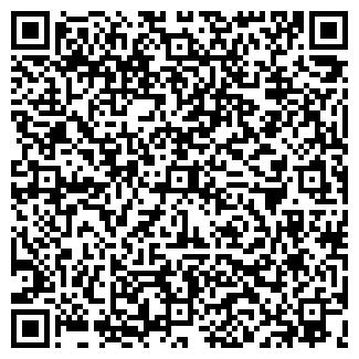 QR-код с контактной информацией организации Амина, ТОО