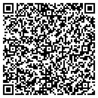 QR-код с контактной информацией организации Кизина, ИП