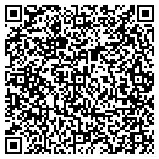 QR-код с контактной информацией организации Тесляры, СПД