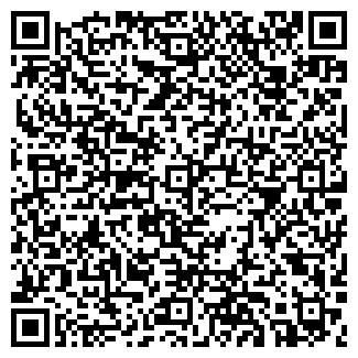 QR-код с контактной информацией организации Алко, ООО