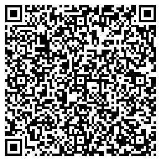 QR-код с контактной информацией организации Шишка, ЧП