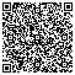 QR-код с контактной информацией организации Черношей Г. Г., ИП