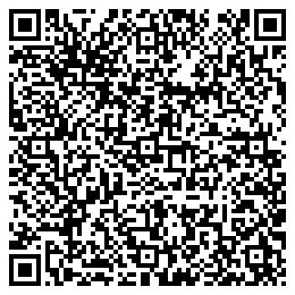 QR-код с контактной информацией организации Субъект предпринимательской деятельности ИП Новик