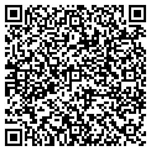 QR-код с контактной информацией организации КиевМеталлСтрой, ООО