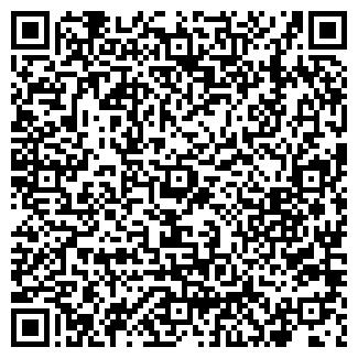 QR-код с контактной информацией организации Бизметалл, СПД