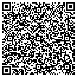 QR-код с контактной информацией организации Чернышев,ИП