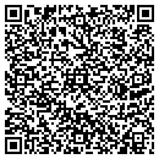 QR-код с контактной информацией организации Аудит. Бухгалтерия. Аутсорсинг, ЧП