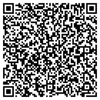 QR-код с контактной информацией организации Дина, ИП