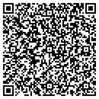 """QR-код с контактной информацией организации ИП """"№1"""