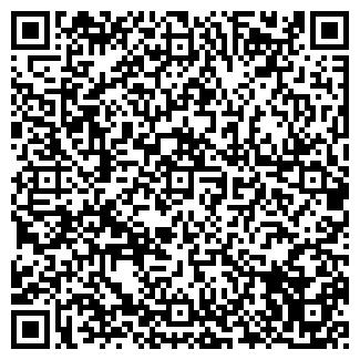 QR-код с контактной информацией организации ИП NikiArt, Частное предприятие