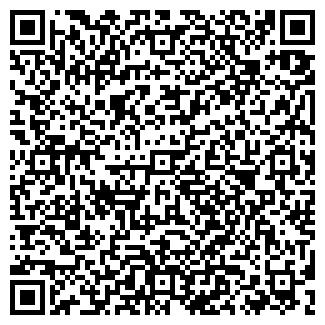 QR-код с контактной информацией организации DiService