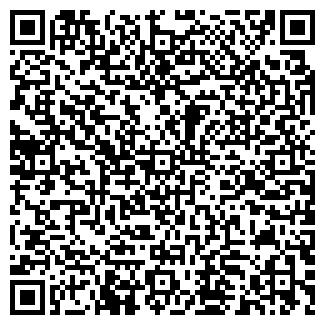 QR-код с контактной информацией организации ЛиО, Субъект предпринимательской деятельности