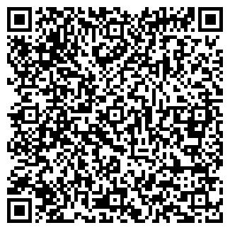 QR-код с контактной информацией организации Ракурс, ЧП