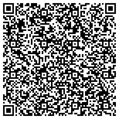 QR-код с контактной информацией организации Веб агентство Virtual life, ЧП