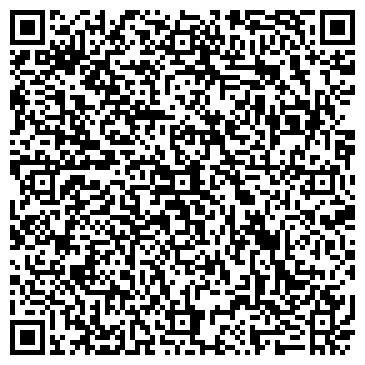 QR-код с контактной информацией организации Vista Auto (Виста Ауто), ИП