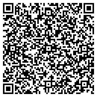 QR-код с контактной информацией организации Karo (Каро), ИП