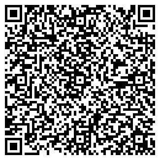 QR-код с контактной информацией организации Babyboom,ИП