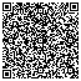 QR-код с контактной информацией организации WebPro, ИП