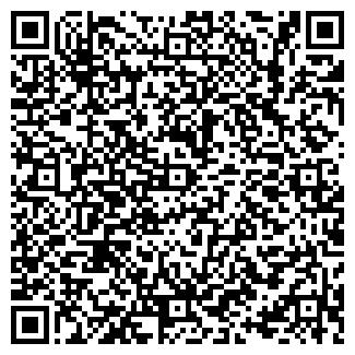 QR-код с контактной информацией организации Icenter,ТОО