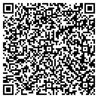 QR-код с контактной информацией организации Рогачева, ИП