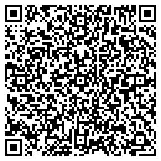 QR-код с контактной информацией организации Римо, ИП