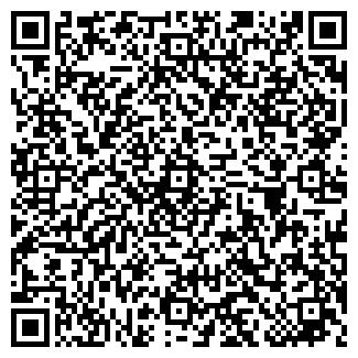 QR-код с контактной информацией организации Вектор, ИП