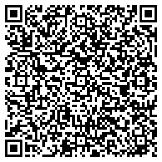 QR-код с контактной информацией организации Иманел, ИП