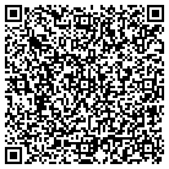 QR-код с контактной информацией организации Ноке, ИП